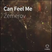 Zemerov - Can Feel Me