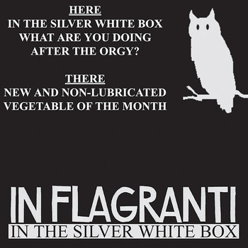 In Flagranti - In the Silver White Box EP