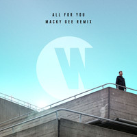 Wilkinson - All For You (Macky Gee Remix)