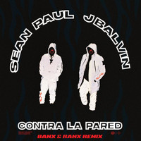 Sean Paul - Contra La Pared (Banx & Ranx Remix)