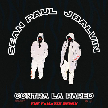 Sean Paul - Contra La Pared (The FaNaTiX Remix)