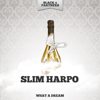 Slim Harpo - What A Dream