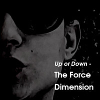 The Force Dimension - Up or Down