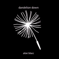 Aloe Blacc - Dandelion Down
