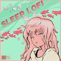 Various Artists - Sleep LoFi - Chill Beats for Sleeping/Chilling/Relaxing in the Evening