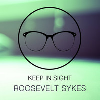Roosevelt Sykes - Keep In Sight