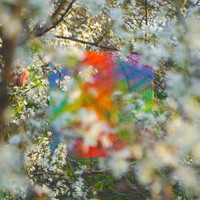 Four Tet / - Teenage Birdsong