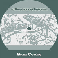 Sam Cooke - Chameleon