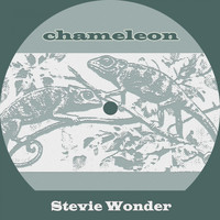 Stevie Wonder - Chameleon