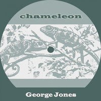 George Jones - Chameleon