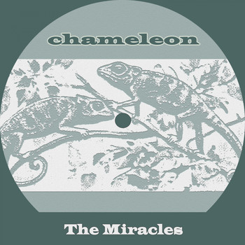 The Miracles - Chameleon