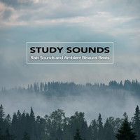 Binaural Beats Sleep, Study Music & Sounds, Binaural Beats Library - Study Sounds: Rain Sounds and Ambient Binaural Beats, Study Alpha Waves, Isochronic Tones and Music For Brainwave Entrainment and Deep Focus and Concentration