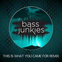 Bass Junkies - This Is What You Came For (Remix)