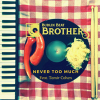 Budlin Beat Brothers - Never Too Much (feat. Tamir Cohen)