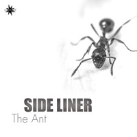 Side Liner - The Ant