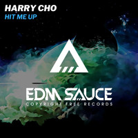 Harry Cho - Hit Me Up