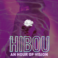 Hibou - An Hour of Vision