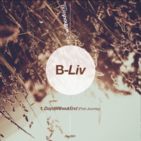 B-Liv - Days Without End (First Journey)