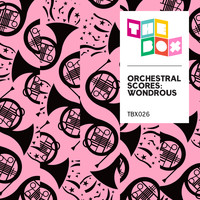 Various Artists - Orchestral Scores: Wondrous