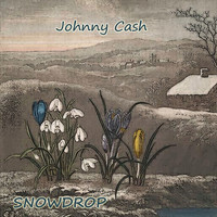 Johnny Cash - Snowdrop