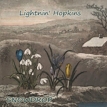 Lightnin' Hopkins - Snowdrop
