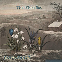 The Shirelles - Snowdrop