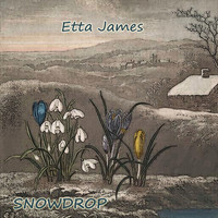 Etta James - Snowdrop