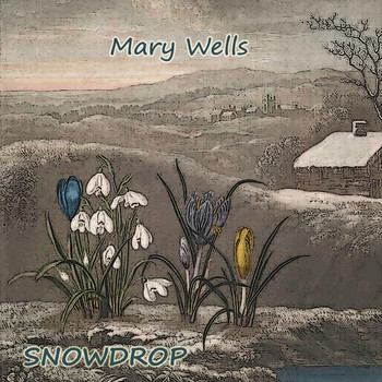 Mary Wells - Snowdrop