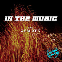 RhythmDB - In The Music (The Remixes)