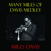 Miles Davis - Many Miles of Davis Medley: Out of Nowhere / A Night in Tunisia / Yardbird Suite / Ornithology / Moose the Mooch / Embraceable You / Bird of Paradise / My Old Flame / Don't Blame Me / Scrapple from the Apple