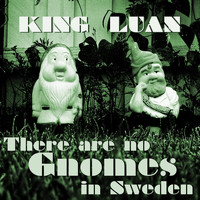 King Luan - There Are No Gnomes in Sweden