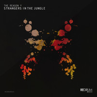 The Reason Y - Strangers in the Jungle