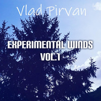 Vlad Pirvan - Experimental Winds, Vol. 1