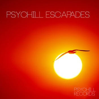 Various Artists - Psychill Escapades