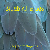 Lightnin' Hopkins - Bluebird Blues