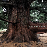Judy Garland - Redwood Tree