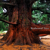 Stan Getz Quartet - Redwood Tree