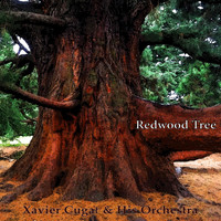 Xavier Cugat & His Orchestra - Redwood Tree