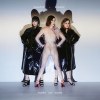 Sleater-kinney - Hurry On Home (Explicit)