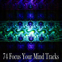Zen Meditation and Natural White Noise and New Age Deep Massage - 74 Focus Your Mind Tracks