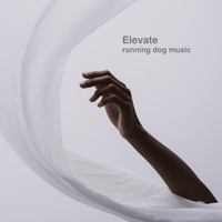 Running Dog Music - Elevate