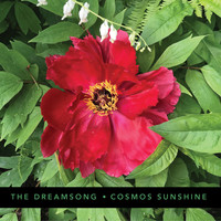 Cosmos Sunshine - The Dreamsong