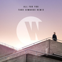 Wilkinson - All For You (Todd Edwards Remix)