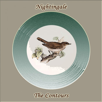 The Contours - Nightingale