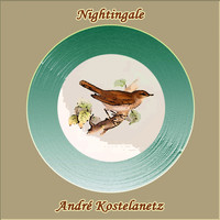 Andre Kostelanetz & His Orchestra - Nightingale