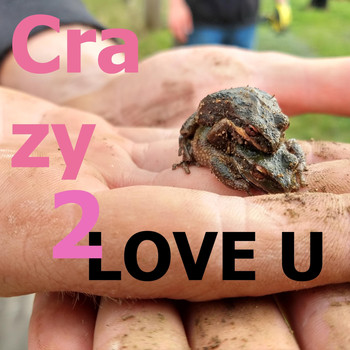 The Potato Bugs - Crazy to Love You