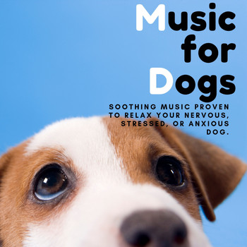 Relaxing BGM Project - Music for Dogs - Soothing Music Proven to Relax Your Nervous, Stressed, or Anxious Dog.