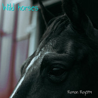 Remon Rey349 - Wild Horses (Unplugged)