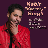 Kabir Singh - The Calm Before The Storm