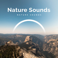 Nature Sounds - Nature Sounds